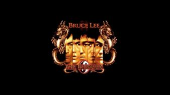 Bruce lee dragons fist of the dragon wallpaper
