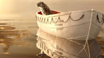 Fantasy movies life of pi Wallpaper