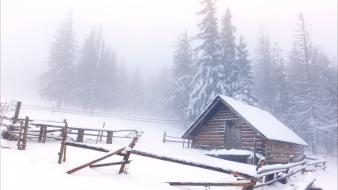 Snow cabin landscapes pine trees Wallpaper