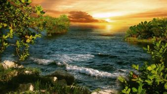 Sunset forests sea wallpaper
