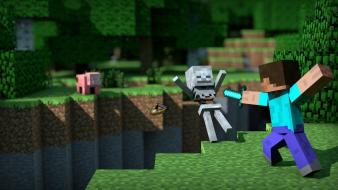 Video games skeletons minecraft pigs mexican b.o.w. Wallpaper