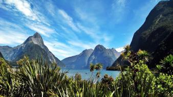 Lakes light blue wildflowers skies milford sound wallpaper