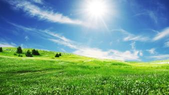 Landscapes nature sun grass spring skies wallpaper