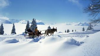 Landscapes snow horses switzerland sleds bing wallpaper