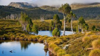 Landscapes trees tasmania australia lakes bing wallpaper
