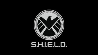 Marvel comics homeland s.h.i.e.l.d. strategic intervention enforcement logistics wallpaper