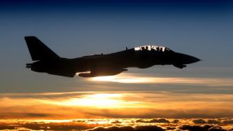 Aircraft f-14 tomcat wallpaper