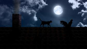 Cats animals chimneys full moon roofs wallpaper