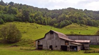 Country alice town plains barn highlands jane wallpaper