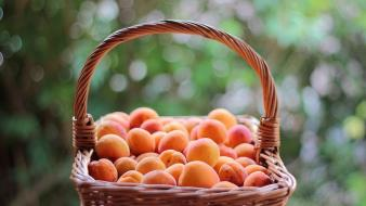 Fruits food peaches baskets apricots wallpaper