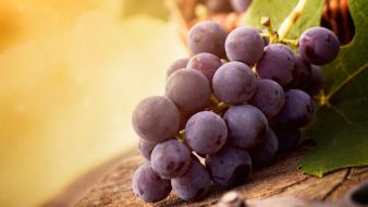 Fruits grapes wallpaper