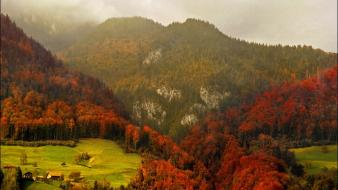 Mountains landscapes trees autumn forests fog Wallpaper