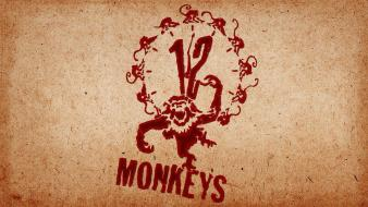 Movies apocalypse 12 monkeys post Wallpaper