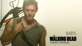 Norman rockwell reedus shows crossbow daryl dixon wallpaper