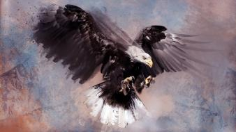 Paintings birds predator eagles artwork Wallpaper