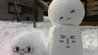 Winter snow cute faces wallpaper