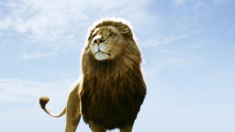 Aslan In Narnia Dawn Treader wallpaper