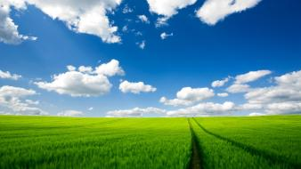 Clouds green field skyscapes wallpaper