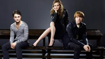 Emma Watson With Harry Ron wallpaper