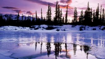 Landscapes nature snow trees lakes reflections wallpaper