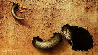 Animals artistic cracks reptiles rusted wallpaper