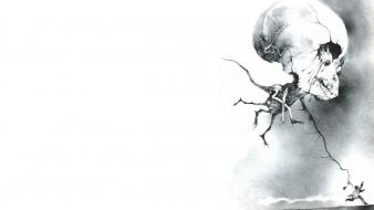 Artwork horror scary skulls white background Wallpaper