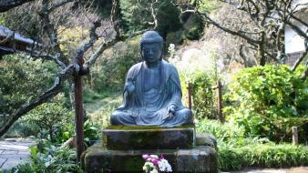 Buddha buddhism flowers garden meditation wallpaper
