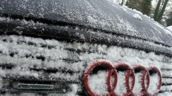 Cars audi quattro wallpaper