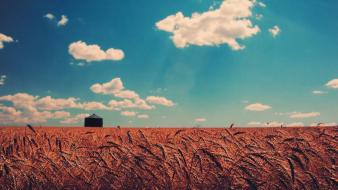 Clouds vintage houses fields wheat meadows skyscapes skies wallpaper