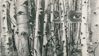 Herbert bayer collage eyes forests grayscale wallpaper