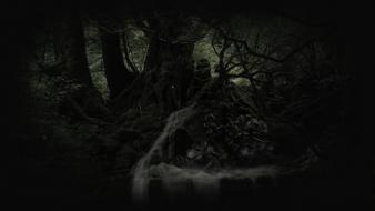 Horror forest derelict wallpaper