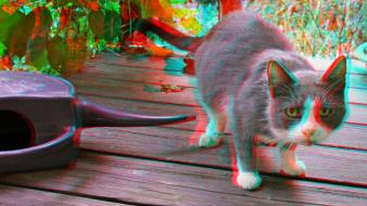 Cats anaglyph 3d wallpaper