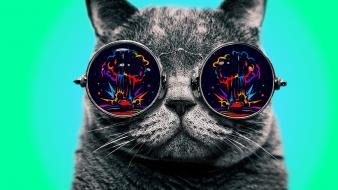 Glasses goggles trippy digital art colors spectre wallpaper