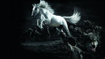 Horses artwork wolves wallpaper
