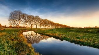 Landscapes nature trees fields creek morning view wallpaper