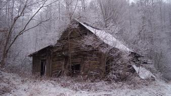 Winter trees forest abandoned cottage wallpaper