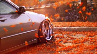 Autumn cars leaves wheels races wallpaper