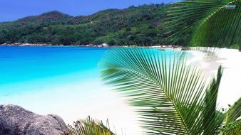 Beach summer seychelles wallpaper