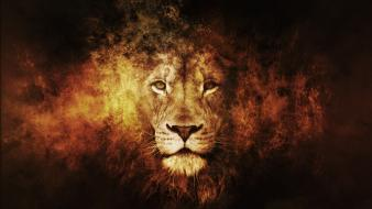 Fire king artwork lions narnia aslan wallpaper