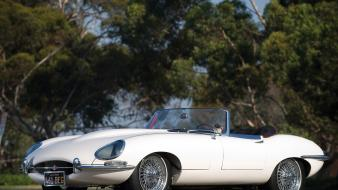 Jaguar 1961 series roadster e-type wallpaper