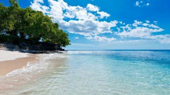 Nature sand trees caribbean turquoise waters beach Wallpaper