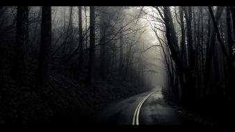 The mist black and white fog landscapes wallpaper