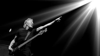 White pink floyd bass guitars roger waters wallpaper