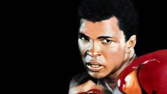 Cassius clay muhammad ali boxer champions fighter wallpaper