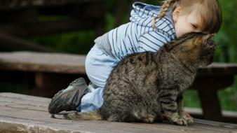 Cats animals bench playing little girl wallpaper