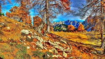 Mountains nature trees slovenian autuum Wallpaper