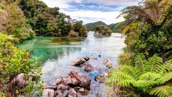 Nature new zealand wallpaper