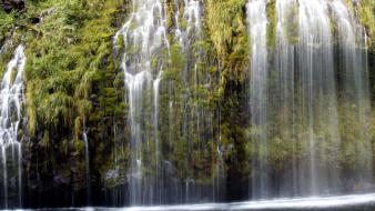 Nature outdoors trees water waterfalls wallpaper