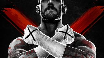 Wwe world wrestling entertainment cm punk Wallpaper