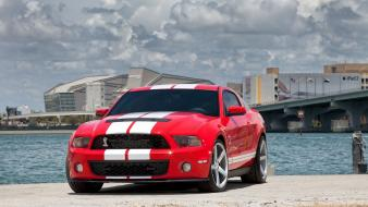 American shelby gt500 auto supersnake gt 500 wallpaper